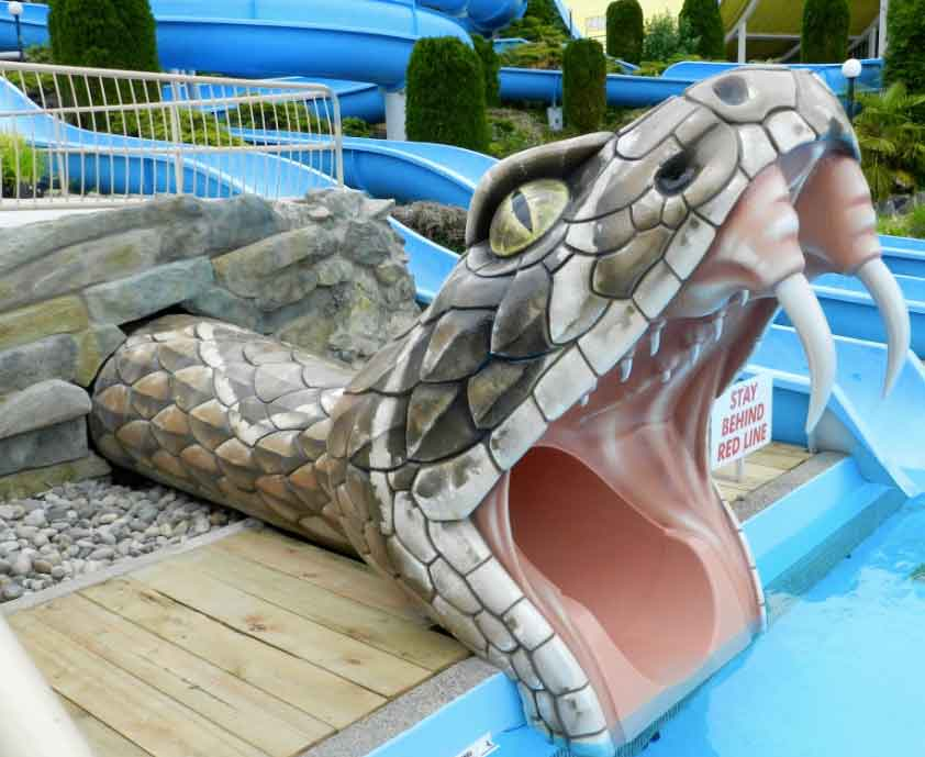 the rattler waterslide cultus lake